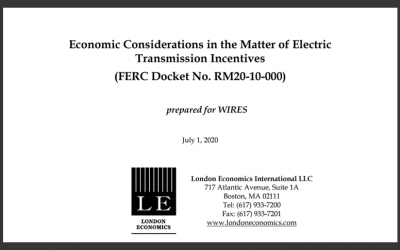 Economic Considerations in the Matter of Electric Transmission Incentives